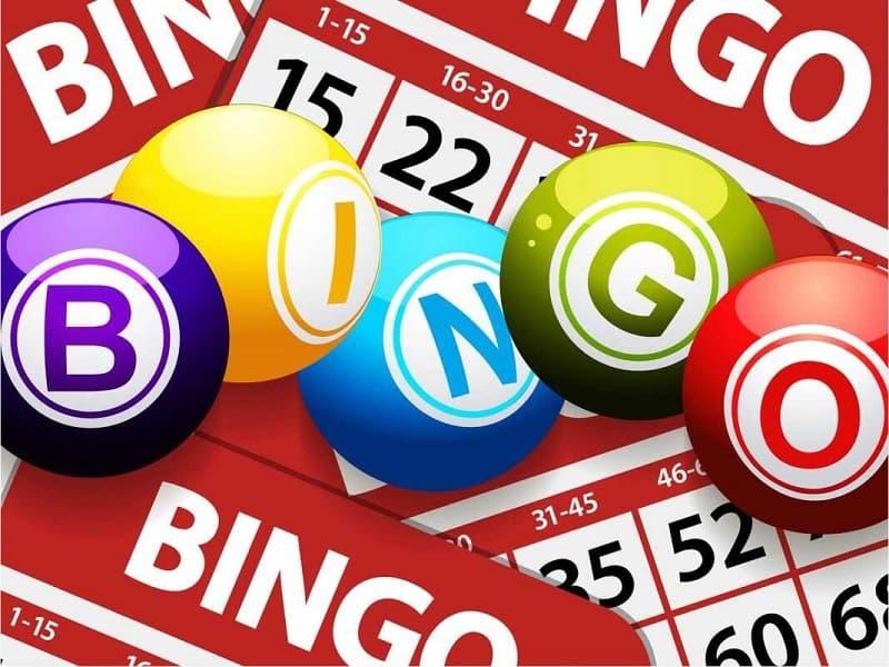 bingo là gì