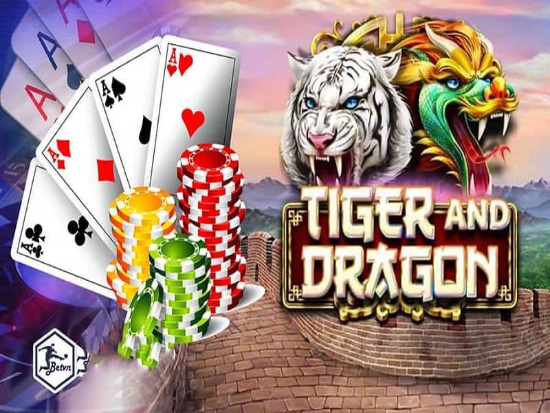 Các lưu ý khi chơi dragon tiger cho người mới