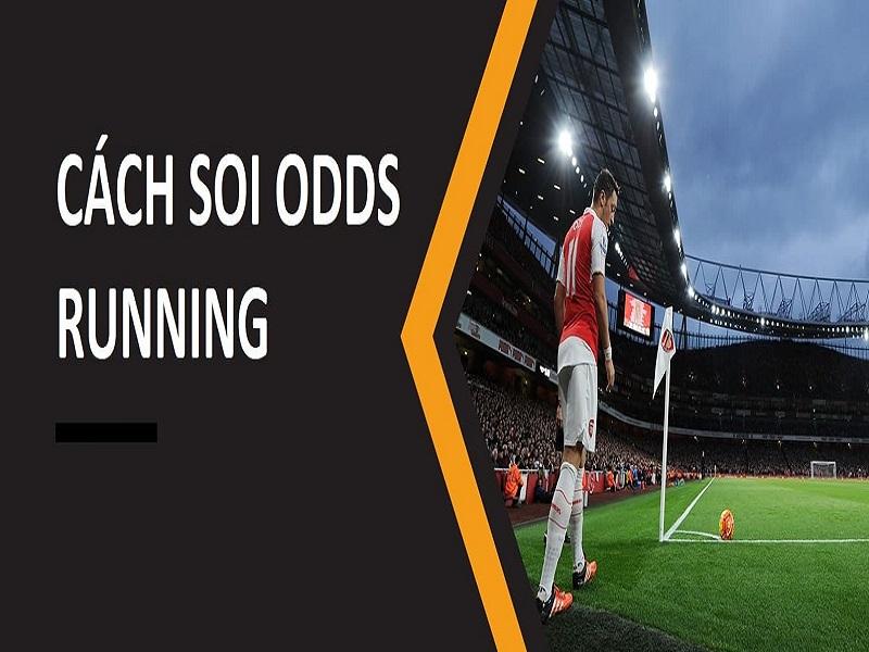 odds là gì