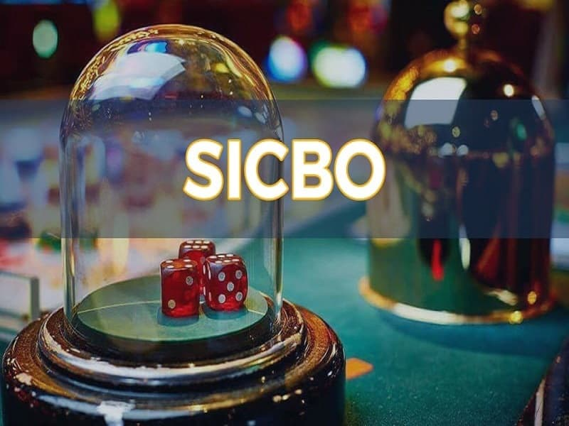 Sicbo online là gi